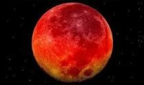 The moon, the moon