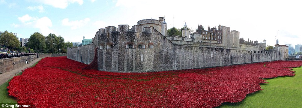 Poppies in London Tower: a story